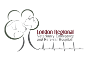London Regional Veterinary Emergency and Referral Hospital