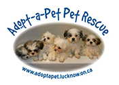 Adopt-a-Pet Pet Rescue