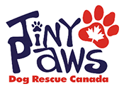 Tiny Paws Dog Rescue