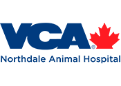 Northdale Animal Hospital