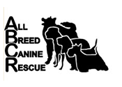 All Breed Canine Rescue