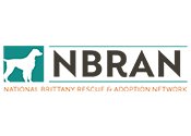 NBRAN, National Brittany Rescue and Adoption