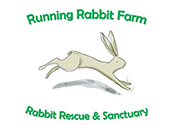 Running Rabbit Farm Rabbit Rescue Sanctuary