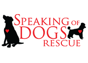 Speaking of Dogs Rescue Program